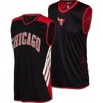 Adidas Reverislbe Chicago Bulls Jersey