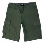 Dickies New York Short Pant
