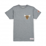 Mitchell & Ness Team History Traditional Tee Chicago Bulls Grey
