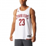 Adidas Int Swingman 23 Ca Lebron James (A61200)