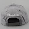 Mitchell & Ness Flexfit 110 Snapback NBA - Golden State Warriors Grey