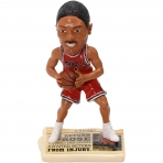 NBA Chicago Bulls D. Rose Bobble Head