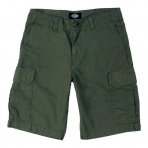 Dickies New York Short Pant