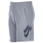 Nike SB Boys Everett Jog Shorts