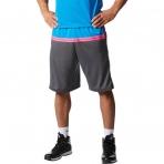 Adidas Wall Alpha Short