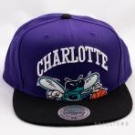Mitchell & Ness Cropped XL Logo Snapback NBA Charlotte Hornets