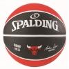 Spalding NBA Team Chicago Bulls sz.7