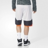 ADIDAS ABL DEFEND SHOR Shorts AP0173