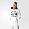 ADIDAS WSHD PO HOODY Hooded sweat AX7689