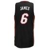Adidas James Miami Heat Swingman Jersey